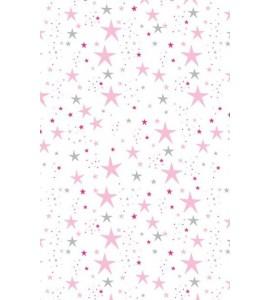 ESTOR_estrella rosa.JPG
